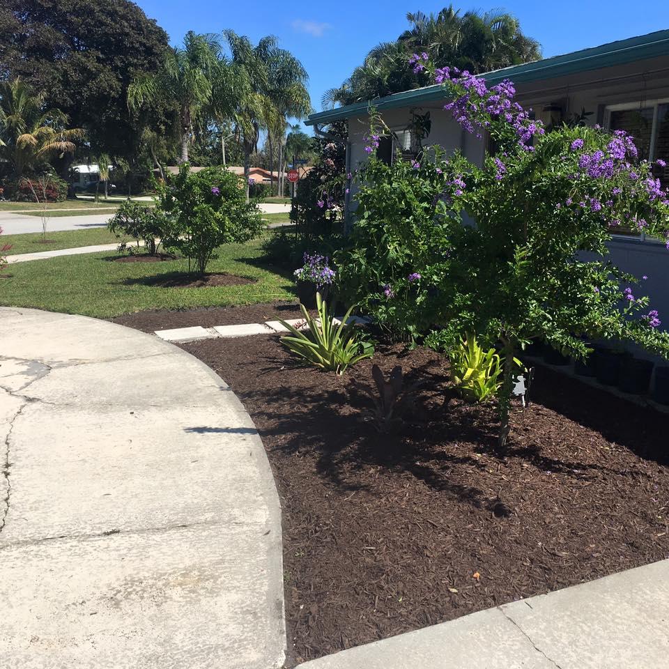 Landscape design in north palm beach fl tree service in for Beach landscape design